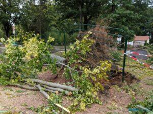 Sturmschäden am Friedhof Friedrichsthal