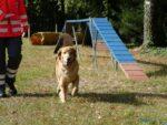 Verabschiedung Wirt des Hundesportvereins Biildstock