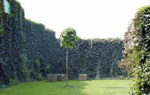 Beispiel einer fertiggestellten Lärmschutzwand | Bild: RAG Montan Immobilien