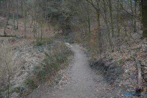 Der Weg zum Steg ...