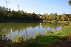Trenkelbach pond Sulzbach