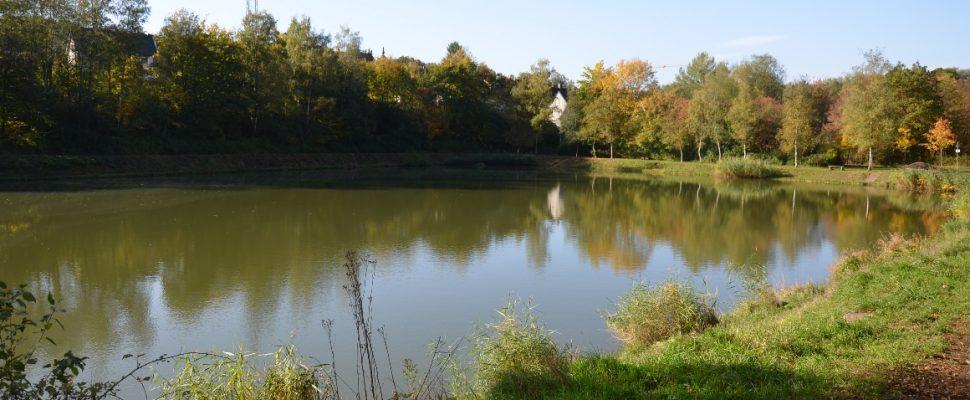 Trenkelbachweiher Sulzbach