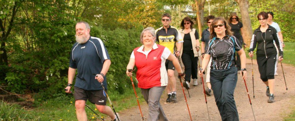 Nordic walking finch rake, Image: TKN