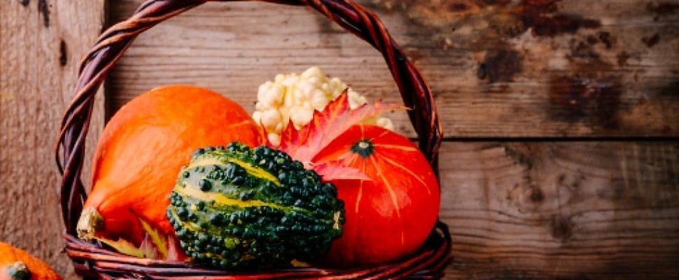 Fall & Pumpkins