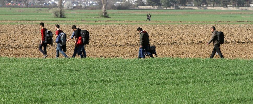 Flüchtlinge auf der Balkanroute, über dts