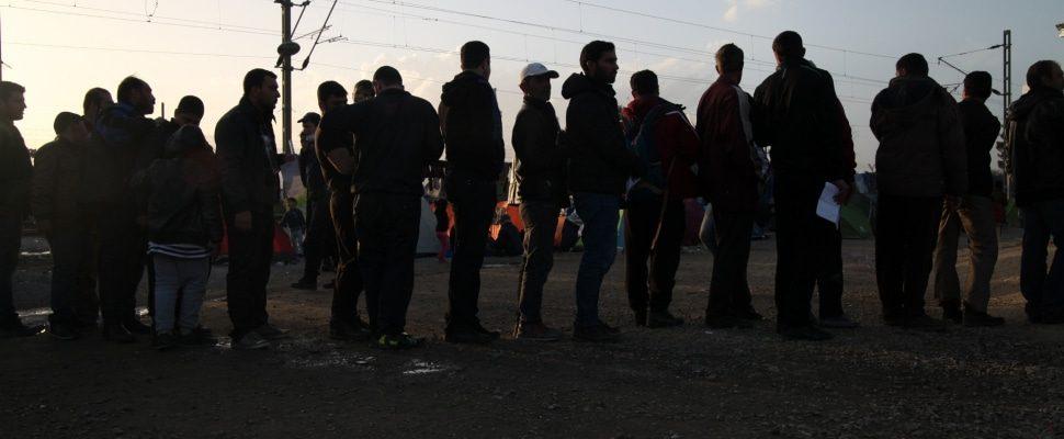 Refugiados, sobre dts