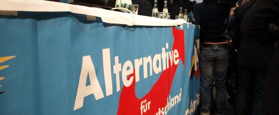 Journalisten bei der AfD, über dts