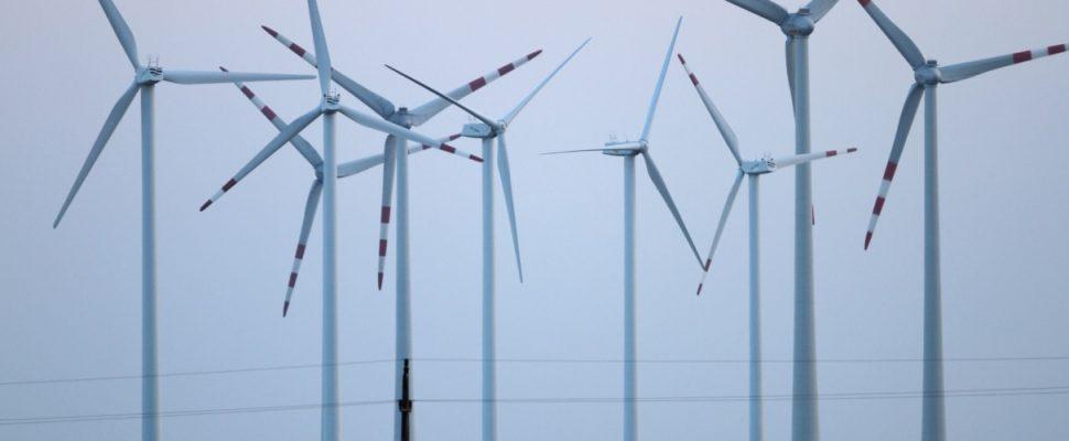 Windräder, über dts