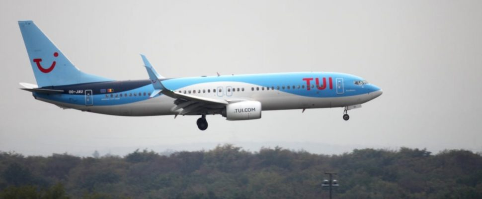 TUI Fly, über dts