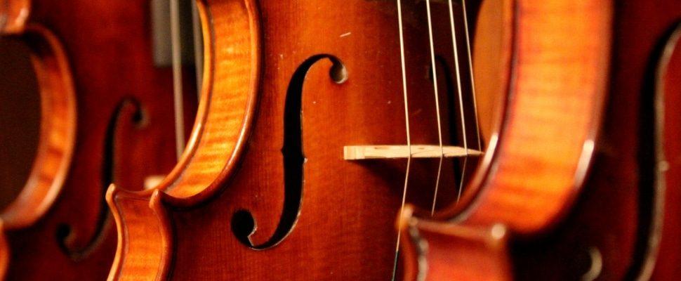 Violines, sobre dts