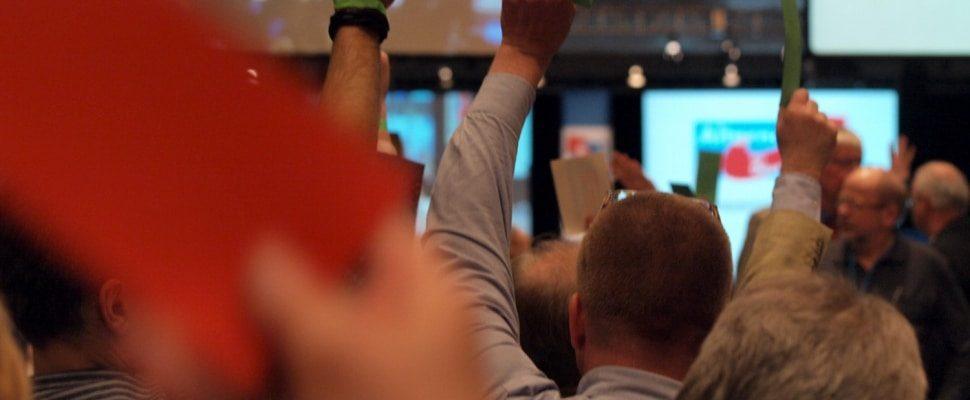 Abstimmung auf einem Parteitag der AfD, über dts