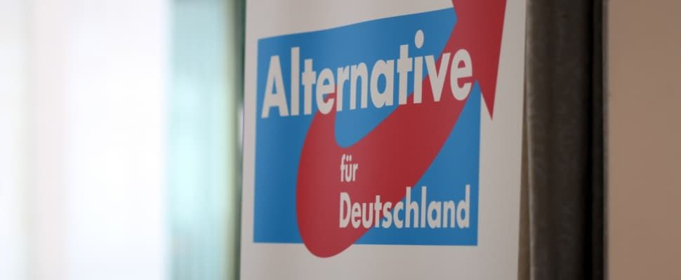 Alternative for Germany (AfD), via dts