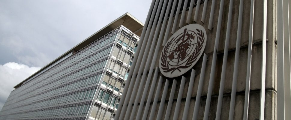 Weltgesundheitsorganisation (WHO) in Genf, über dts