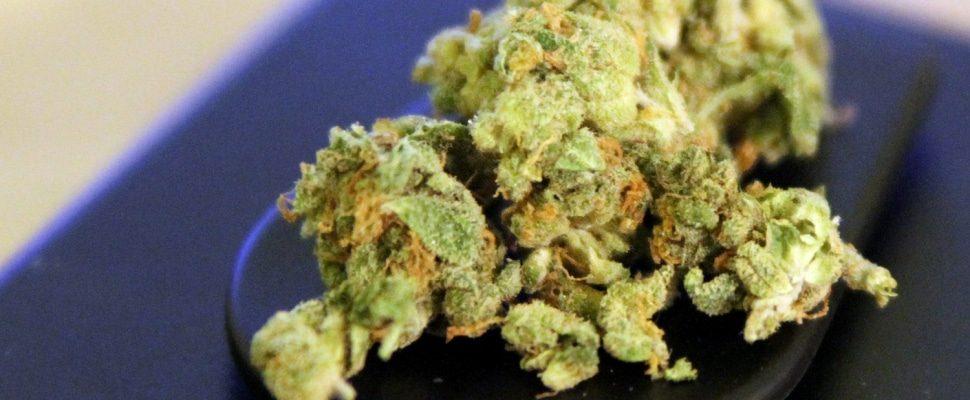 Cannabis, sobre dts